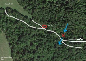 Buck Bed is indicated by red circle, stand location by red 'X'. Blue arrows show wind direction. White lines indicate deer trails. (Alfalfa, standing corn and clover food plots to the east.