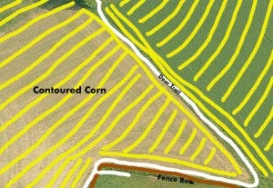 This aerial photo shows the how the deer utilized the secure travel corridors created by the standing corn field. These corridors connected several pieces of small woodlots that are utilized as bedding areas.